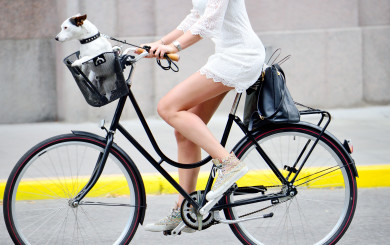 Bicycle commuting safety in los angeles